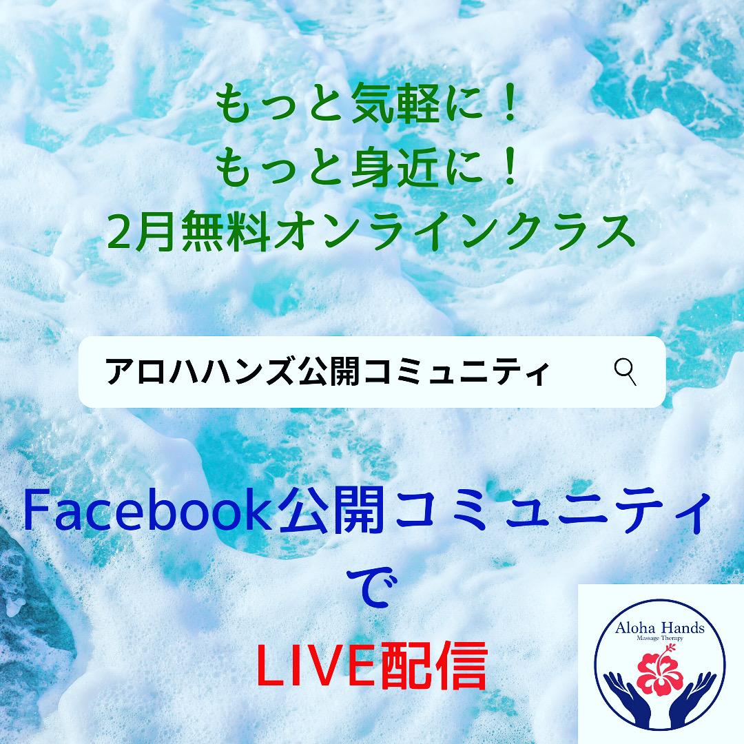 🌺2月の無料オンライスクールは、FacebookのLIVE配信となります🌺